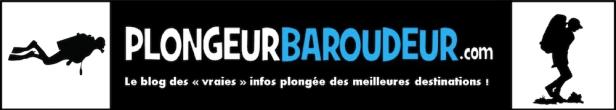 LOGO plongeur baroudeur 2018