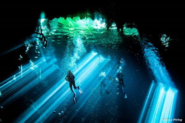 photo-plongee-cenote-the-pit