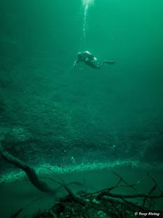 photo-plongee-cenote-angelita