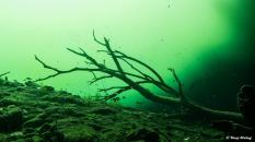 photo-plongee-cenote-carwash