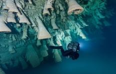 photo-plongee-cenote-zapote