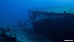 plongee-isla-mujeres-epave-gunboat58.jpg
