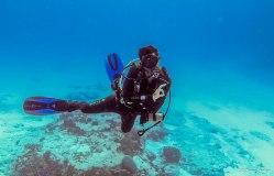 faire-son-divemaster-plongeur-baroudeur