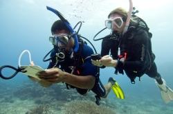 5 plongeur-avec-boussole-sous-leau.jpg