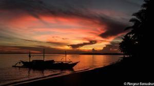 coucher-de-soleil-donsol-philippines-woodland