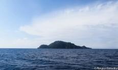 Apo island pret