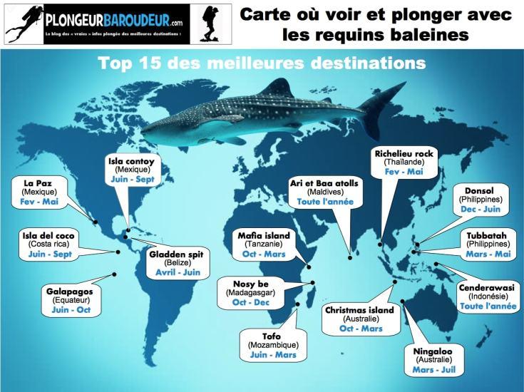 carte-ou-plonger-avec-des-requins-baleines-min