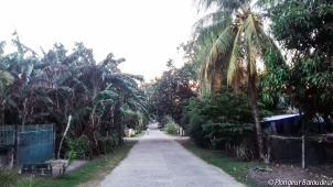 Dauin street3