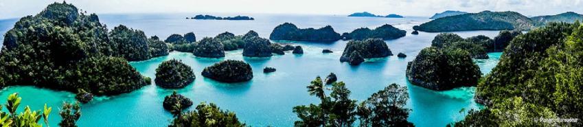 photo1-raja-ampat-Fan-island-min