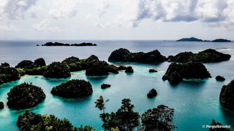 photo13-raja-ampat-Fan-island-min