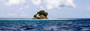 photo4-raja-ampat-Fan-island-min