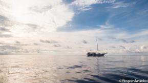 Lambo in the sea-min