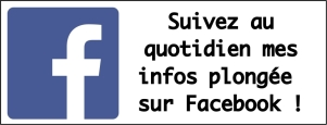 logo like ma FB sur article