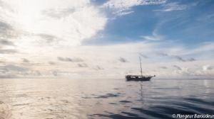 Lambo in the sea-min.jpg